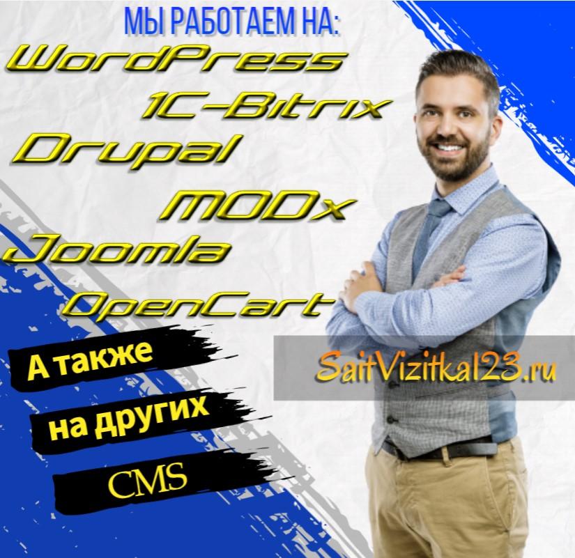 профессиональная разработка сайта